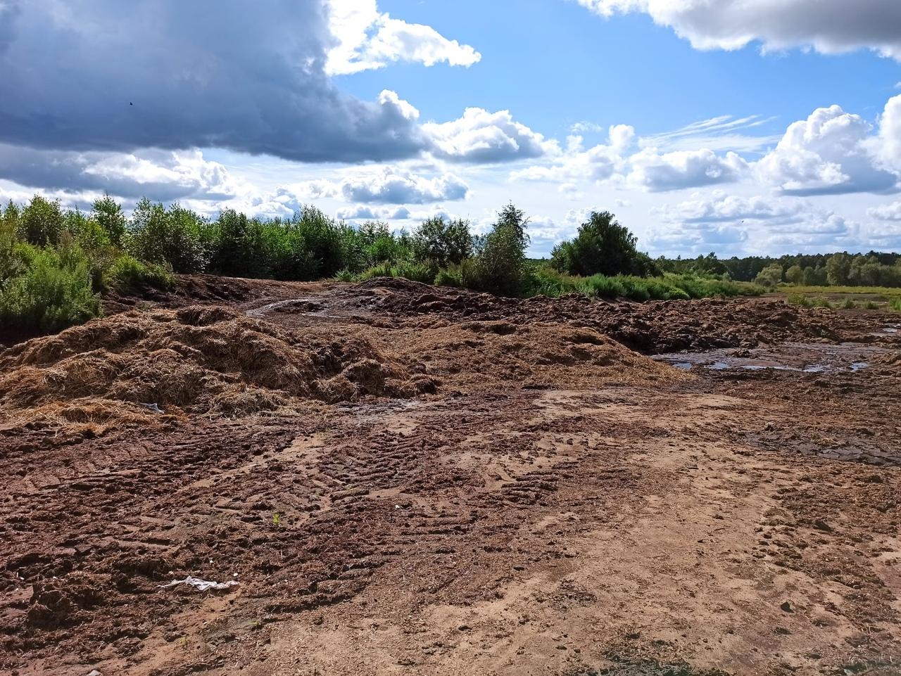 Продолжается работа по поиску возможных источников загрязнения реки Дубна
