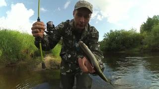 Ловля спиннингом по реке Десна.