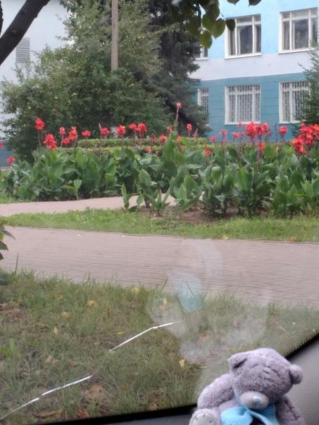 Вопрос от подписчика: Александра Пчелина