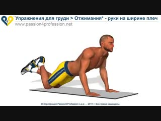 Спорт 24/7. Упражнение для груди - Отжимания Руки на ширине плеч
