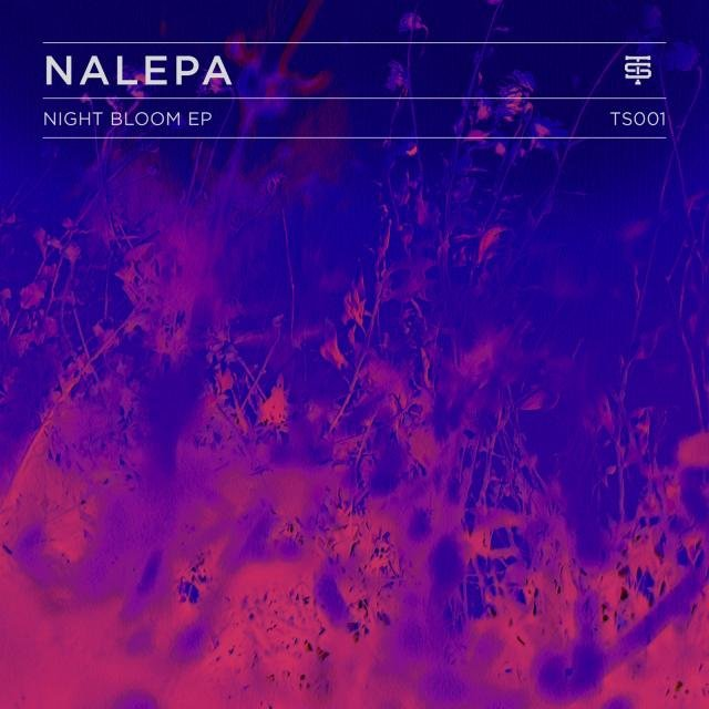 Nalepa