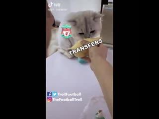 Liverpool this transfer window