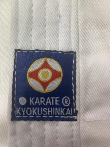 Доги киокушинкай — руководство!, изображение №9