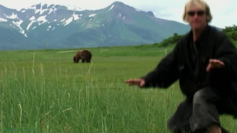 Человек гризли Документальный история природа животные 2005