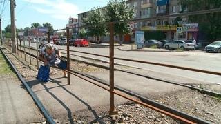В районе Детского мира убрали знаки пешеходного перехода, но бийчан это не останавливает