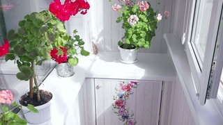 Цезарь Балкон с Цветочками