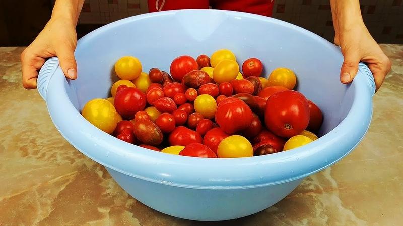 Делаю ТАЗАМИ Рецепт из старого журнала Работница 50 банок помидоров улетают за зиму Вкуснятина