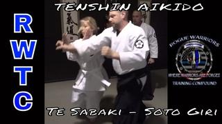 Aikido's outside hand deflection #takaingaikidoback