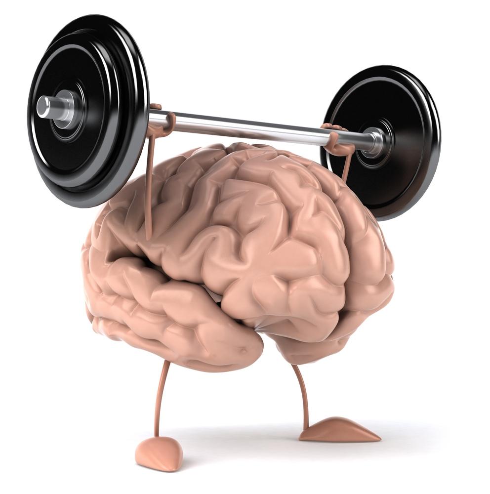 Фото, смешные картинки мозга человека