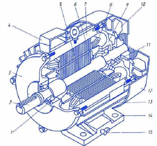 Конструкция трехфазного асинхронного электродвигателя с короткозамкнутым ротором