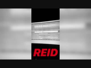 Terror reid id