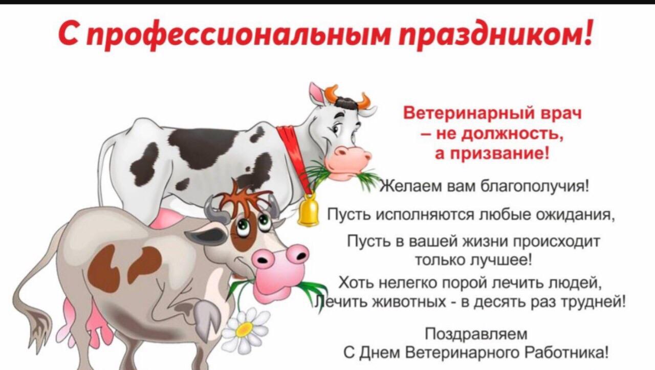 стихи поздравление от коровы свои