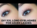 XXL LONG VOLUMINOUS LASH ROUTINE FOR STRAIGHT ASIAN EYELASHES