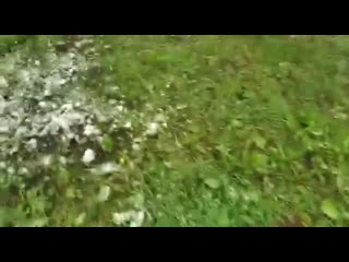 В Адыгее и Краснодарском крае за несколько дней до начала лета выпало 45 сантиметров снега