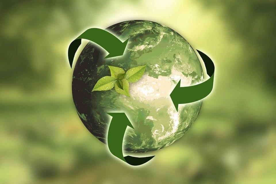 Библиотека № 117 представит презентацию ко Дню окружающей среды
