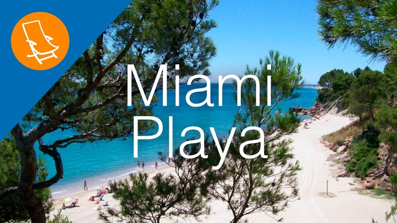 Miami Playa - Where the beach meets the forest