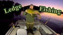 Ledge Fishing in High Pressure: A quick fishing trip