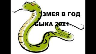 КАК СЛОЖИТСЯ  2021 ГОД ДЛЯ РОЖДЕННЫХ В ГОД ЗМЕИ???!!!