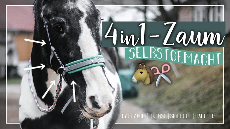 4in1 ZAUM selbstgemacht 🐴✂️ Trense Kappzaum Sidepull Halfter A G HorseDiary