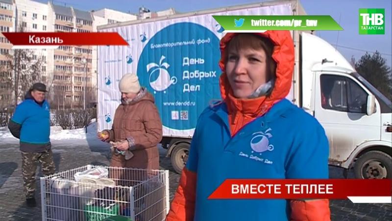 Эстафета 100 добрых дел к столетию ТАССР продолжает набирать обороты
