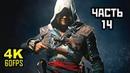Assassin's Creed IV Black Flag Прохождение Без Комментариев Часть 14 PC 4K 60FPS