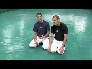 Грейси разбирают бои Алдо, Белфорта и Пальхареса на UFC 142
