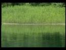 Kitaro - The Light of the Spirit (1987) - The Field