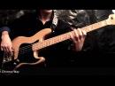 30 Amazing slap funk Bass lines