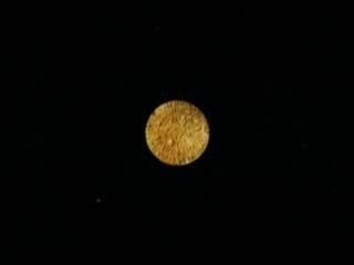 Этруски - Русы. Фестский диск