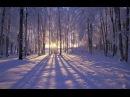 Приход зимы так скор и неизбежен Раймонд Паулс Элегия Бабочки на снегу