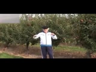 Виктор Давидзон - За границей можно жить