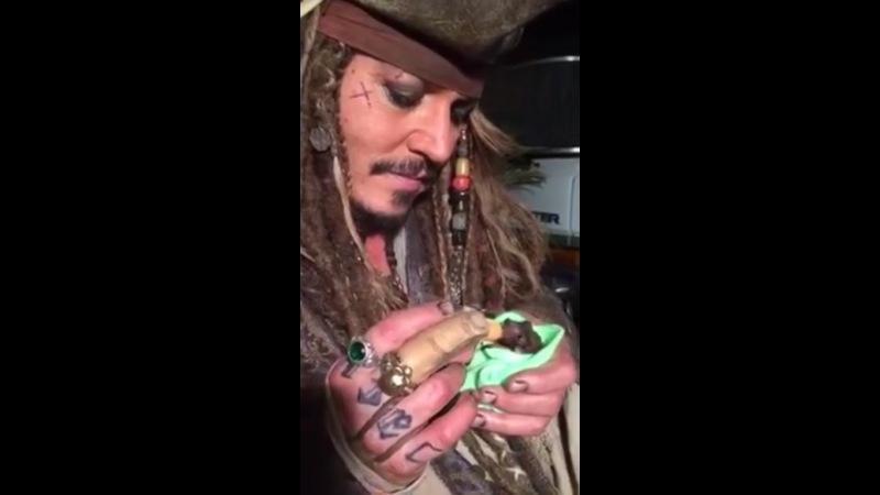 Johnny Depp bottle feeding his orphaned baby bat
