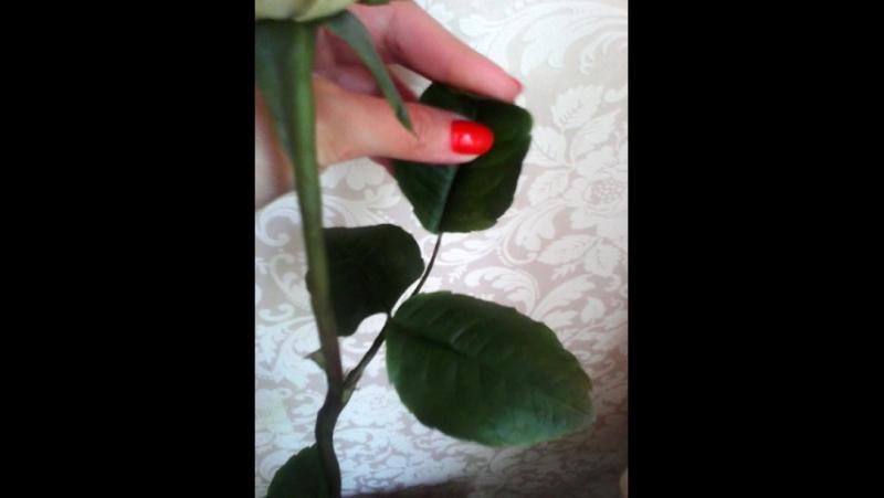 Роза из само затвердевающей глины на воздухе club48092103 Татьяна Пирогова