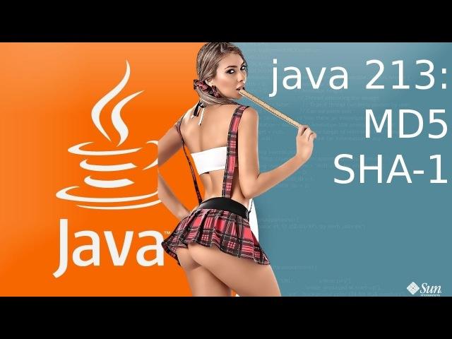Урок Java 213 Работа с шифрованием MD5 и SHA-1