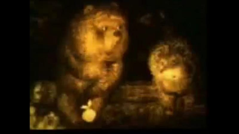 Ежик в кумаре