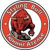 Тюнинг Ателье Styling Bull