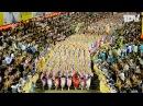 阿波踊り2016 総集編 Awaodori Festival in Tokushima Japan