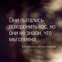 Магомед Садулаев
