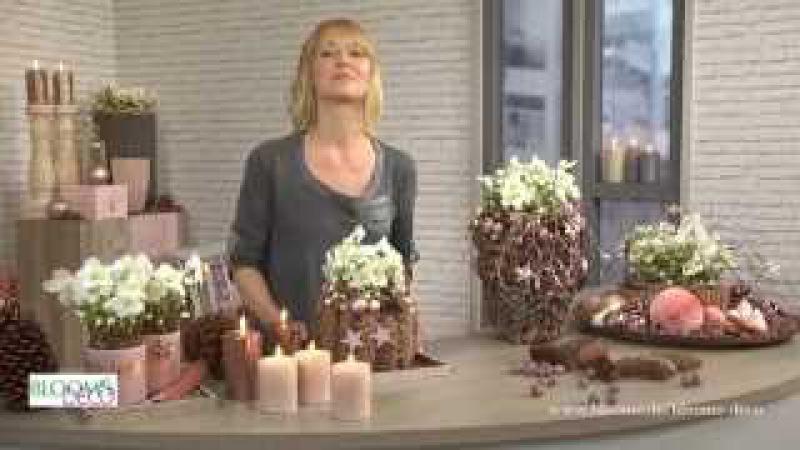 """""""Verboom Beauty Dekorative Ideen mit Christrosen"""