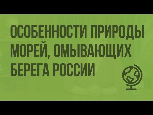 Особенности природы морей, омывающих берега России. Видеоурок по географии 8 класс