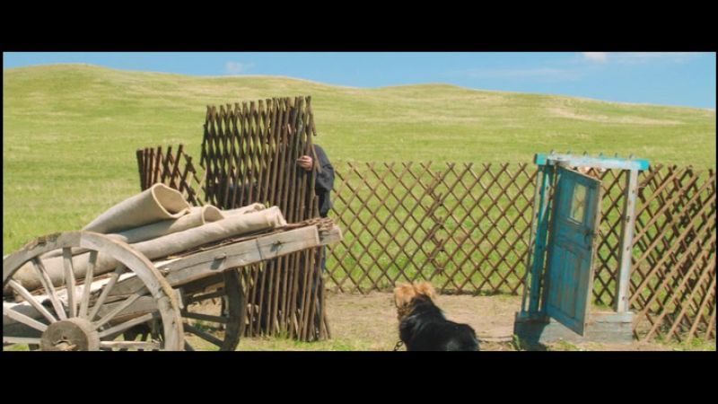 Lultimo lupo (Wolf Totem) 2015 (regia Jean-Jacques Annaud con Shaofeng Feng, Shawn Dou, Ankhnyam Ragchaa) 2015 da Bandinotto