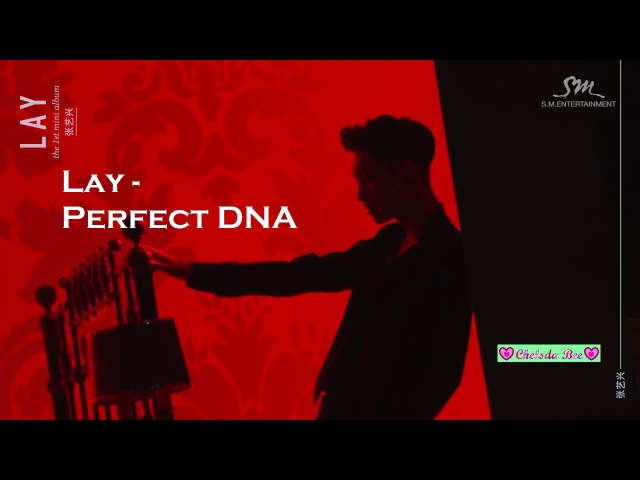 LAY Zhang Yixing 💓 - Sexy - Perfect DNA Video 💜💙