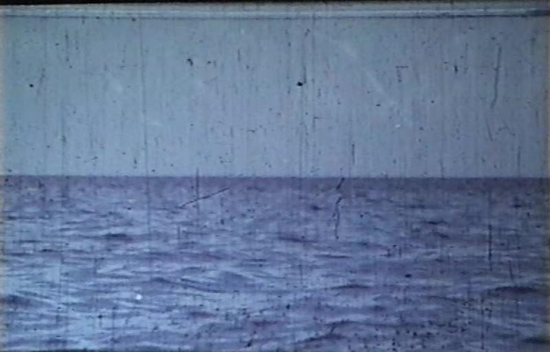День дельфина (США, 1973) фантастика, реж. Майк Николс, дубляж, советская прокатная копия