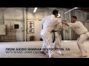 3 on 1 Realistic Aikido Training - How long would you last in a Tenshin Randori