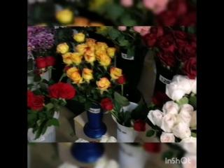 Приход свежего цветка