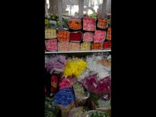 Свежий приход цветов