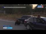 Сегодня ночью в центре Архангельска полицейские застрелили медведя, который напа