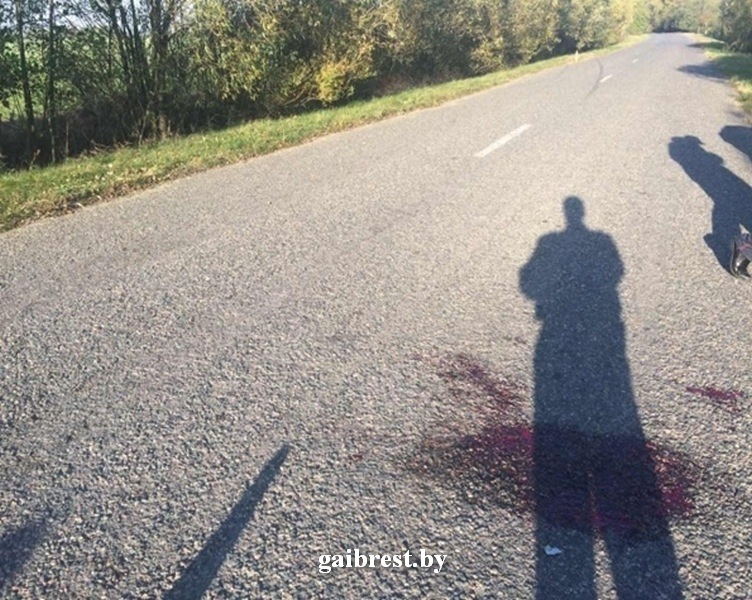 Дрогичинский район: водитель сбил пешехода и скрылся