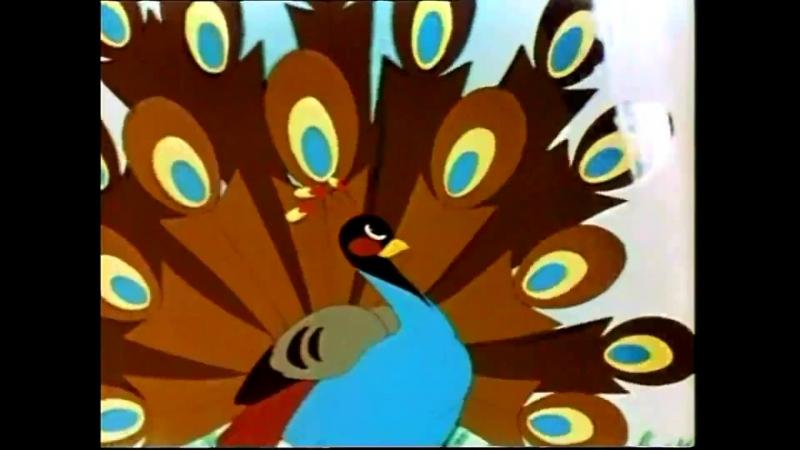 Это что за птица 1955 реж Евгений Мигунов