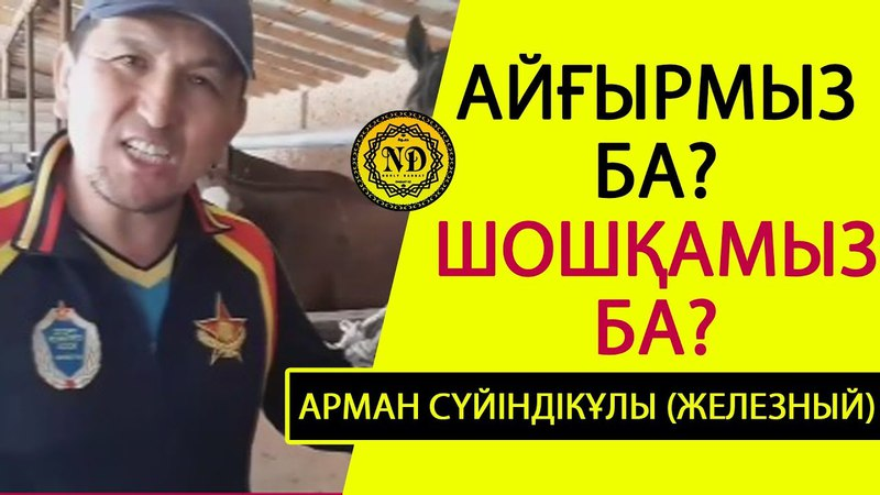 Айғырмыз ба шошқамыз ба Арман Сүйіндікұлы Железный